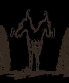 Erfolgreich verkaufen - Conversion Killer kennen - Esel von Buridan