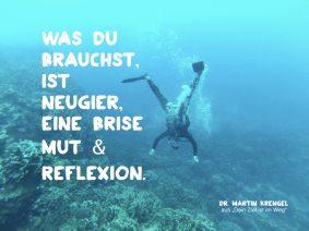 mit neugier-mut-reflexion ans Ziel - schoenes kurzes Zitat von Dr Martin Krengel aus dem Motivationsratgeber Dein Ziel ist im Weg